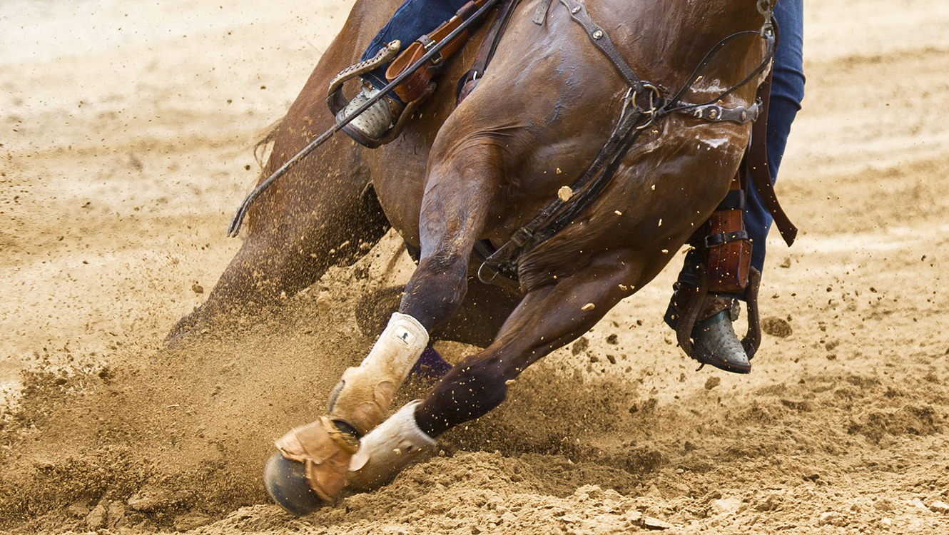 Sorrel horse makes a sharp turn in the sand.